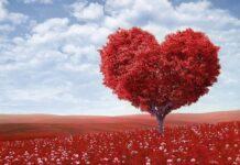 Walentynki dla dwojga